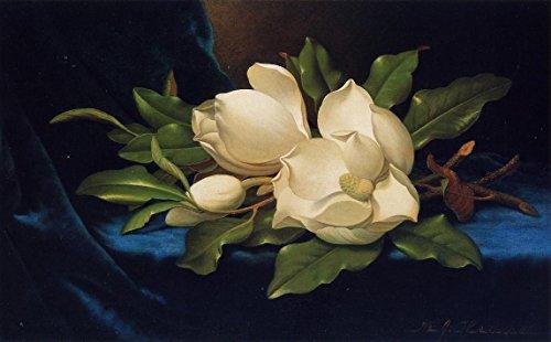Heade Canvas Print - Giant Magnolias on a Blue Velvet Cloth by Martin Johnson Heade - 16