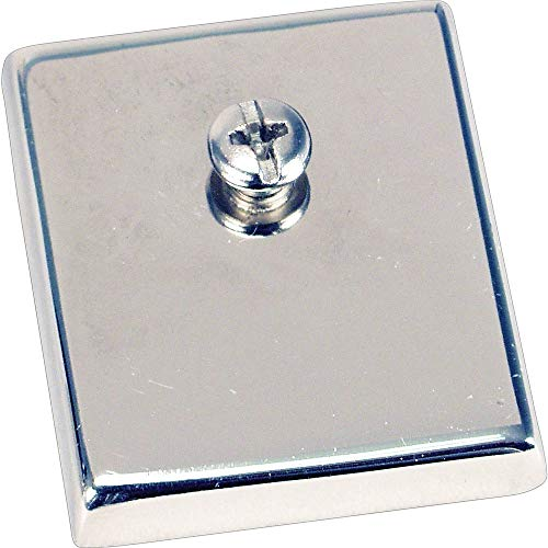 """DPS by Staples 342960 Chrome Heavy-Duty Magnets 2"""" x 2"""" 2/Pack (DPS21661-CC)"""