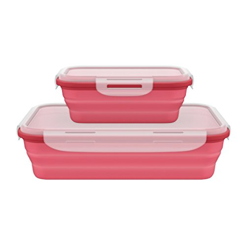 - Roaming Cooking Silicone Collapsible Food Containers with Lock Lids - Set of 2
