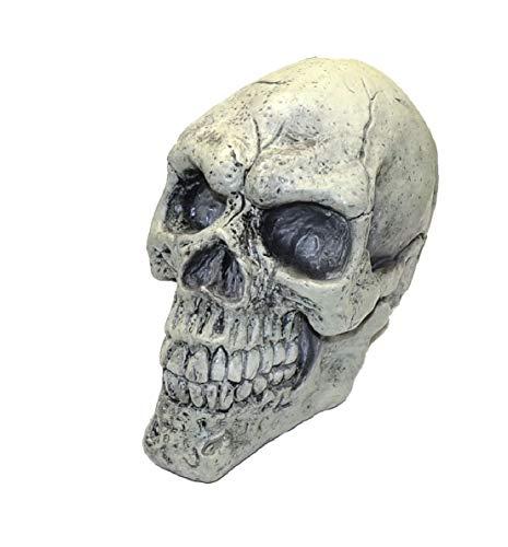 Glow in The Dark Full Skull Head Halloween Decor