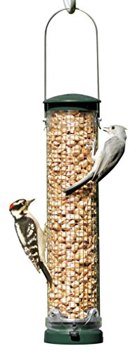 Aspects Feeder Finch (Aspects Quick Clean Spruce Peanut Mesh Feeder)