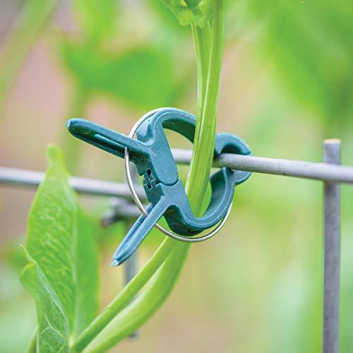 (Burpee Garden Plant Clips | Set of 10 | Green |, Reusable)