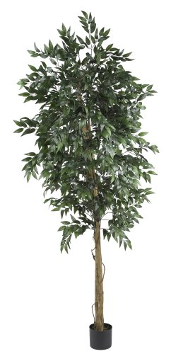 (Nearly Natural 5267 Smilax Tree, 6-Feet, Green)