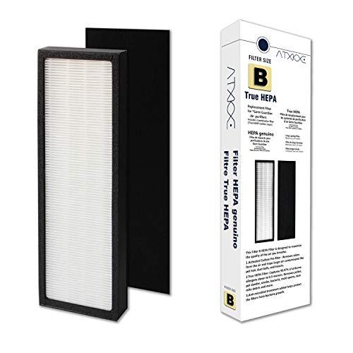 ATXKXE True HEPA Filter Repalcement for GermGuardian FLT4825 Series Air Purifier Filter B, Model AC4825/AC4300/AC4800/4900 (Filter B, 1 Pack)