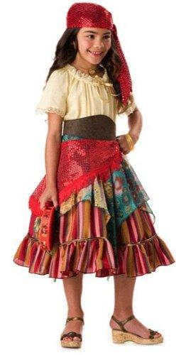 Tambourine Dress Costume (InCharacter Costumes Girls Fortune Teller Costume, Multi Color, Medium)