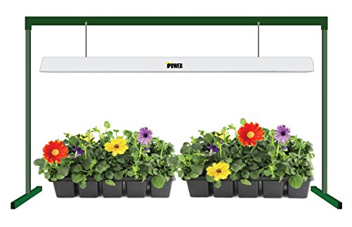 iPower 54W 4 Feet T5 Grow Light System with Stand Rack for Plant Growing, 6400K