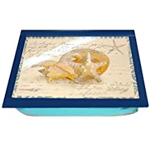 Nautical Beach Design Laptop Desk or Lap Tray, Features Seashells and Starfish with Bean Bag Backing for Your Lap