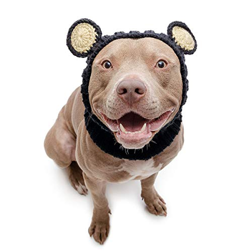 Zoo Snoods Black Bear Dog Costume - Neck and Ear Warmer Snood for Pets (Large) -