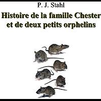 Histoire de la Famille Chester et de deux petits orphelins (French Edition)