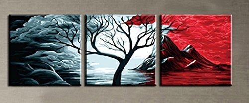 MADE4U Paint By Numbers Kits Canvas Mounted on Wood Frame with Brushes and Paints for Adults Children Seniors Junior DIY Bigginner Lever Arcylics Painting Kits on Canvas (Volcano W01) by MADE4U