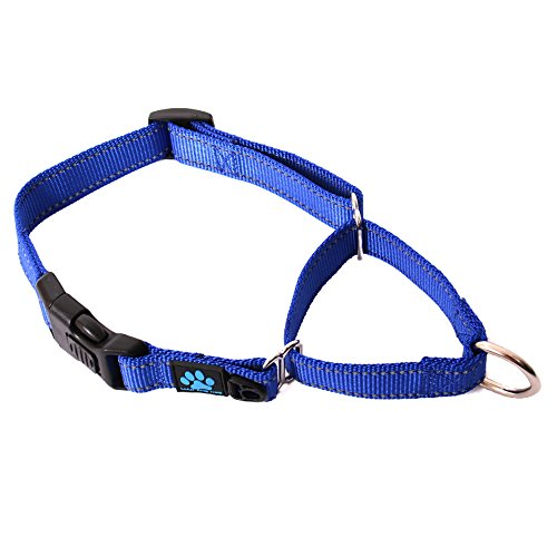 Max and Neo Nylon Martingale Collar - We Donate a Collar to a Dog Rescue for Every Collar Sold (Medium/Large, Blue)