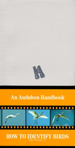 How to Identify Birds (An Audubon Handbook)