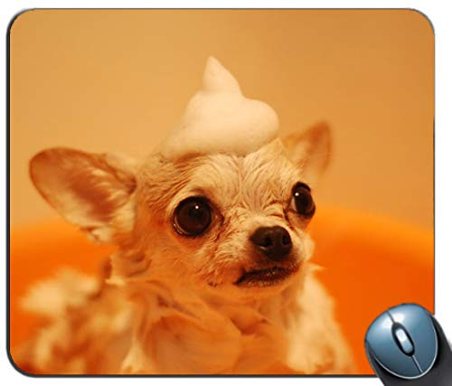 (Animal Blur Canine Chihuahua Customized Mouse Pad Rectangle Mouse Pad Gaming Mouse mat)