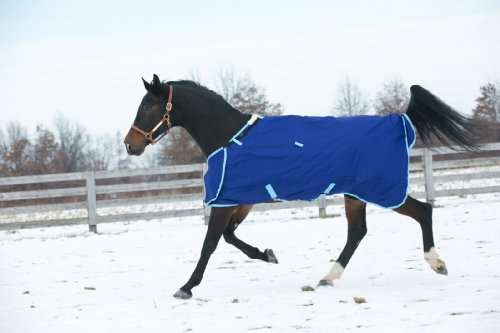 HUG 1200D Prize 300g Heavy Weight Turnout Blanket by Hug