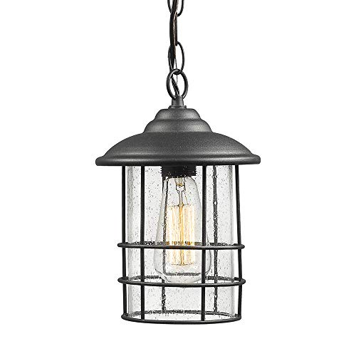 Emliviar 1-Light Outdoor Pendant Light, Exterior Hanging Lantern in Black Finish with Seeded Glass, 1803CW2-H