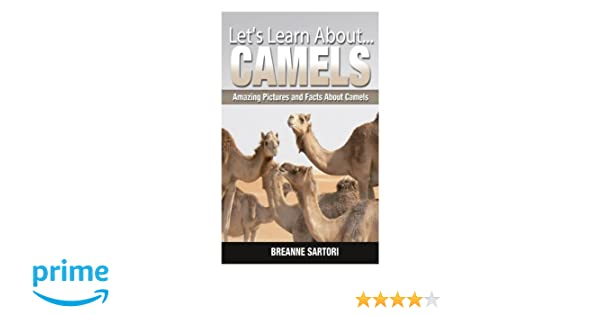 Camels: Amazing Pictures and Facts About Camels (Let's Learn