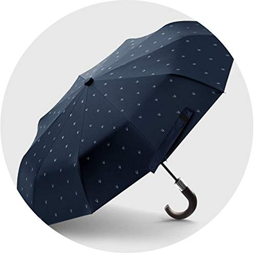 Wind Resistant Folding Automatic Umbrella Male Luxury Big Windproof Umbrellas for Men Rain Black Coating Mens Gifts Nylon XL,blue have pattern by Fragrancety (Image #1)