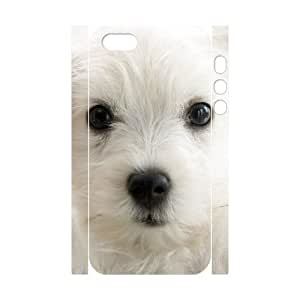 chen-shop design 3D Bumper Plastic Customized Case Of Cute Dog for iPhone 5,5S high XXXX
