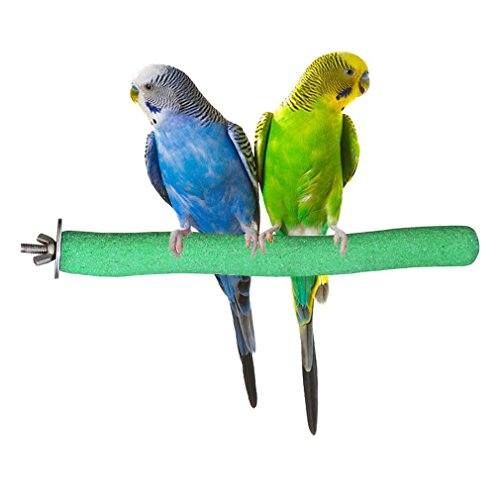 Bird Perch Rough-surfaced Nature Wood Stand Toy Branch For Parrots By Kintor Green (Small-8inch)