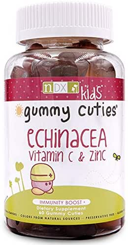 Natural Dynamix Echinacea Vitamin C and Zinc Mineral Supplement, 60 Count