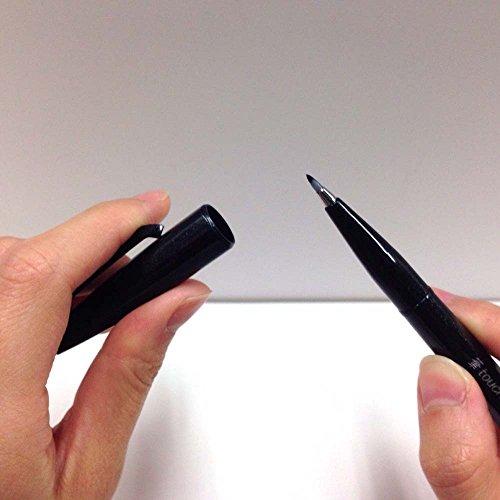 Pentel brush touch felt-tip pen 12 color set SES15C-12