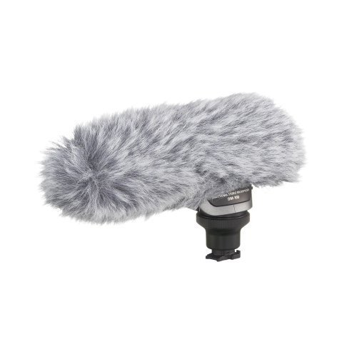 Canon 2591B002 DM-100 Directional Stereo Microphone for HF/HG Series Camcorders by Canon