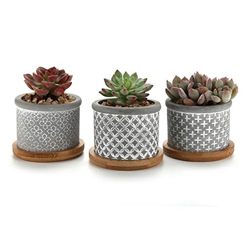 T4U 2.25 Inch Cement Succulent Planter Pot with Bamboo Tray Grey Set of 3, Small Concrete Cactus Plant Pot Indoor Herb Window Box Container for Home and Office Decor Birthday Wedding Christmas Gift