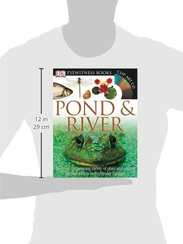 Eyewitness Pond & River (DK Eyewitness Books): Steve Parker ...