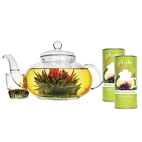 Primula Daisy 40 oz Glass Teapot Gift Set - Includes Infuser, 24 Variety Flavor Flowering Teas