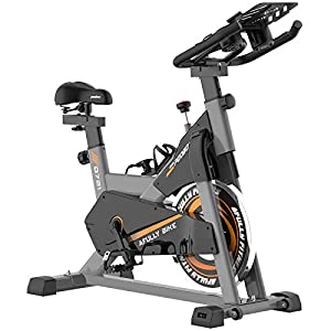 Well-Being-Matters 41DLQwyZgiL._SS300_ pooboo Exercise Bike, Belt Drive Indoor Cycling Bike, Stationary Bike LCD Display for Home Cardio Workout Bike Training
