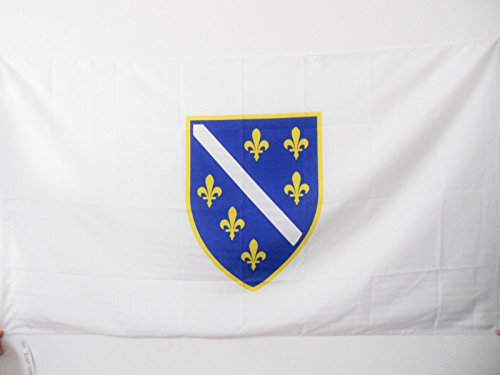- AZ FLAG Bosnia and Herzegovina 1992-1998 Flag 3' x 5' for a Pole - Old Bosnian Flags 90 x 150 cm - Banner 3x5 ft with Hole