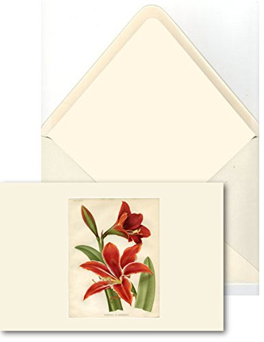 HAND MADE CARDS [Set Of 10] - Flowers/Botanical