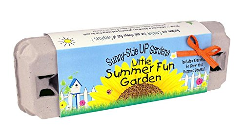 Backyard Safari Company Sunny-Side Up Gardens, Little Summer Fun - Summer Sunnies