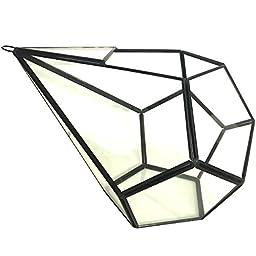 Rustic Indoor / Outdoor Geometric Glass Terrarium Industrial Finish (Glass, 10 Inch Tear Drop)
