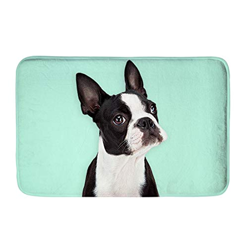INSTANTARTS Personalized Anti-Slip Door Mat Boston Terrier Dog Carpet Bedroom Rug Decor Stair Home ()