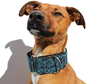 candyPet Collar Martingale para Perros - Modelo Triangle, S ...