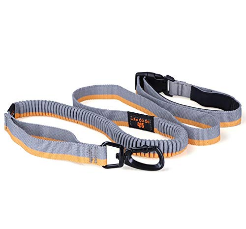 KTYX Sports Running Dog Leashes, Waist And Hands, Dual-use Explosion-proof, Telescopic Traction Rope, Black + Red, Gray + Orange Pet Chain (Color : B) by KTYX