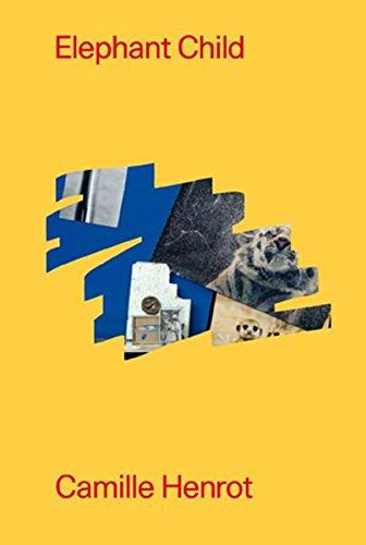 Camille Henrot. Elephant Child : Galerie Kamel Mennoir, Paris (Anglais) Relié – 1 avril 2016 Monique Jeudy-Ballini Clara Meister Kristina Scepanski Michael Connor