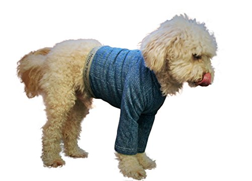 Mozzie Pants XLTBLUE Dog T-Shirt, X-Large