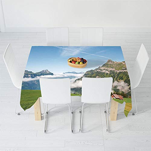 TecBillion No Fading Tablecloth,Mountain,for Table Outdoor Picnic Holiday Dinner,90.2 X 70.1 Inch,Pastoral View Switzerland Lake Lucerne Cloudy Grassland