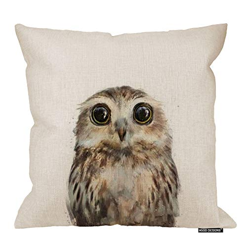 - HGOD DESIGNS Animal Fashion Abstract Art Cute Owl Wildlife Cushion Cover Case Pillow Zippered Square Pillowcase 18X18 Inches,Eagle