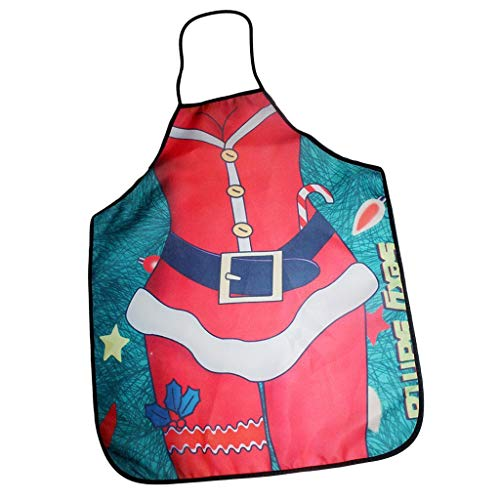Agordo Waterproof Home Apron Novelty Funny Cooking BBQ Chef Gift Christmas Costume -