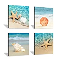 Hardy Gallery Beach Seashell Starfish Wall Art: Blue Ocean Beauties Artwork Print on Wrapped Canvas for Living Room (12