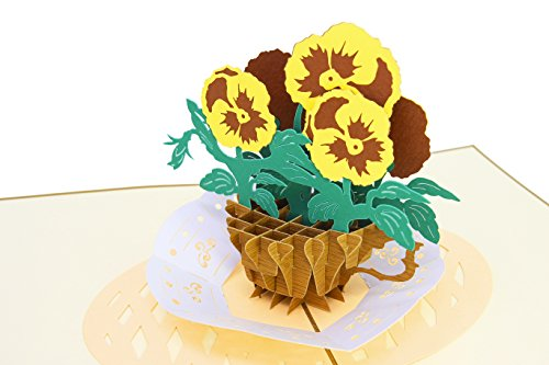 - PopLife Teacup Pansies 3D Pop Up Mother's Day Card - Birthday Pop Up Card, Baby Shower Gift, Get Well - Fold Flat for Mailing - for Mother, for Daughter, for Wife, for Granddaughter, for Mom, Sister