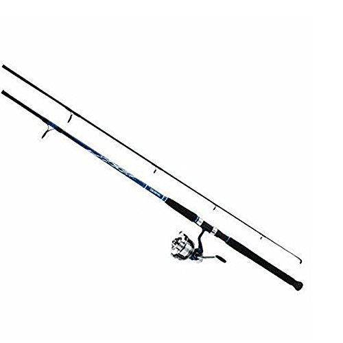 (958773 Daiwa D-Wave Saltwater Spin Combo 3BB Sz50 9' 2pc Med)