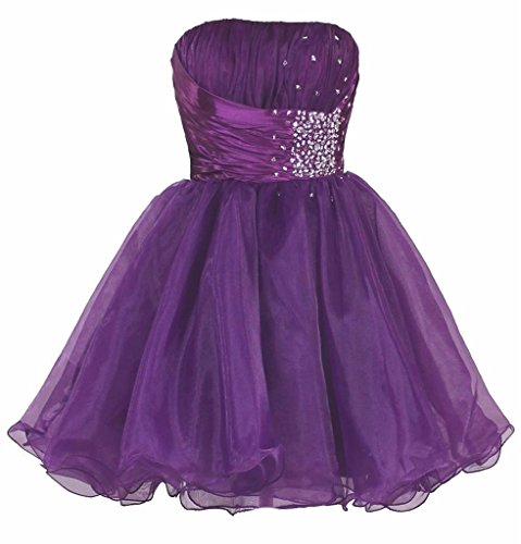 (Snowskite Women's Short Strapless Beaded Organza Cocktail Party Homecoming Dress Purple 14)