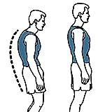 Back Support Belts Posture Corrector Back Brace Improves Posture and Provides For Lower and Upper Back Pain Men and Women (M)