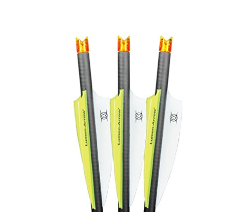 Lumenok lumen-arrow bolt 20',(3pk) orange
