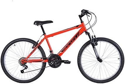 Biocycle Anexo susp 24
