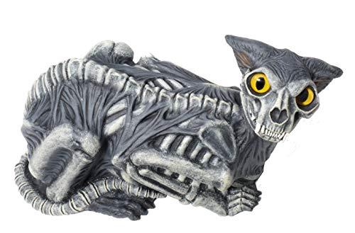 Zombie Cat Prop (Forum Novelties Zombie Cat)